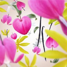 Aroma Love Fleur Gourmande